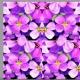 kaleidoscope-flowers